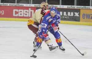 Brown ZSC Lions - GM 2 d