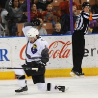 Player Evaluations: 2013-14 Manchester Monarchs forwards
