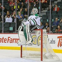 Dallas Stars goalie NHL hockey