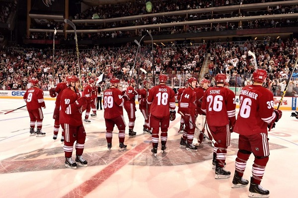 Coyotes Arizona NHL hockey