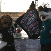 Sharkie-Bailey-NHL-hockey-S